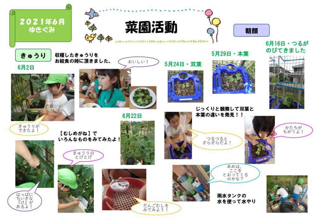 ホームページゆきぐみ菜園活動② Aのサムネイル