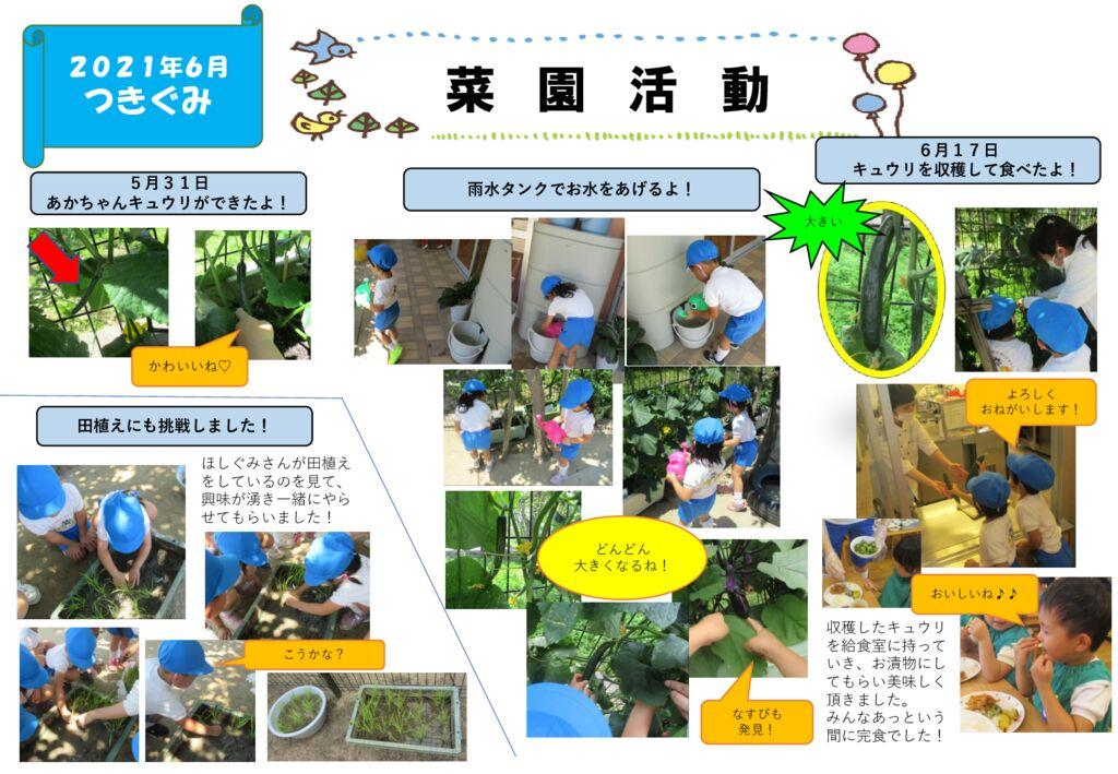 つきぐみ菜園活動2 (2)のサムネイル